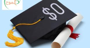 أفضل 5 دول للتعليم والمنح المجانية