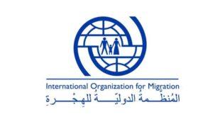 دور منظمة الهجرة الدولية في الهجرة واللجوء؟